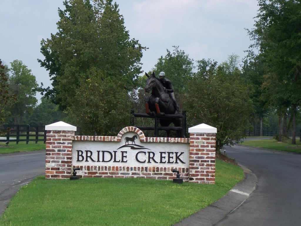Lot A-1 Ph 1 Bridle Creek Trail - Photo 1