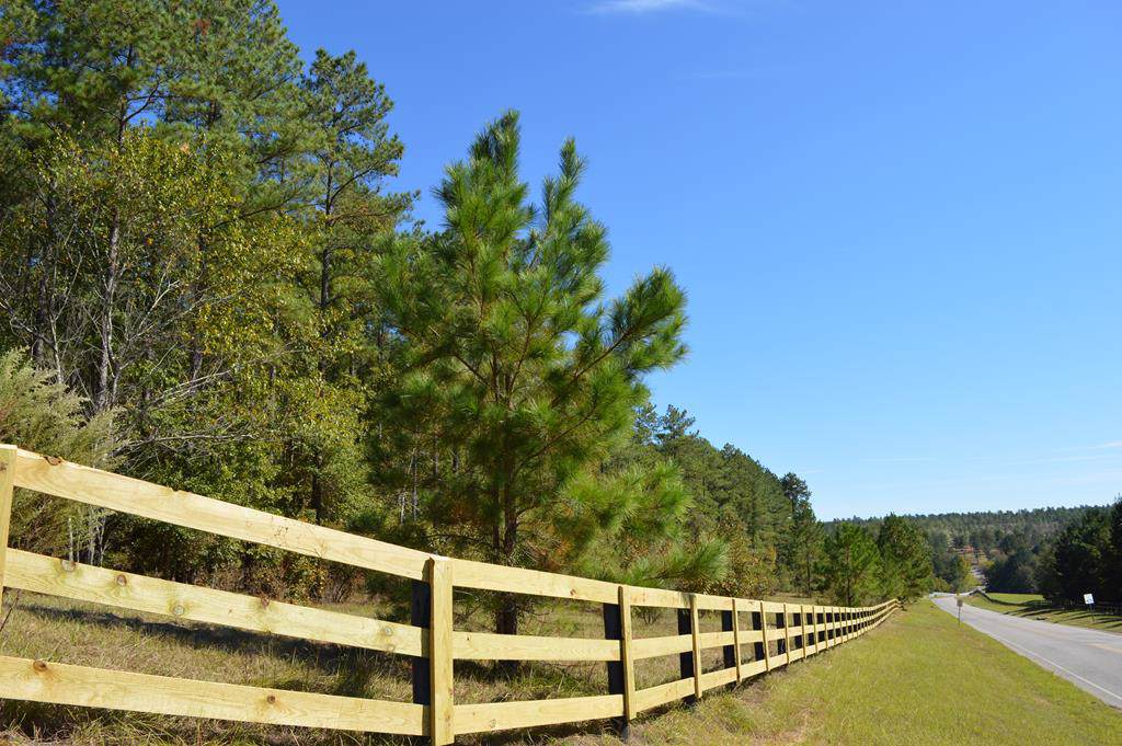 Lot 29 Anderson Pond Road - Photo 1