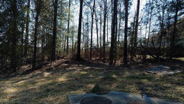258 Graystone Drive, BEECH ISLAND, SC 29842 (MLS #110060) :: Shannon Rollings Real Estate