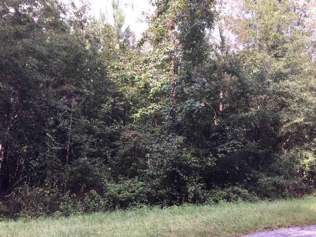 0 Bushland Road, WILLISTON, SC 29853 (MLS #110335) :: RE/MAX River Realty