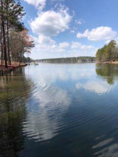 125 Edisto Lake Road, WAGENER, SC 29164 (MLS #110475) :: Shaw & Scelsi Partners