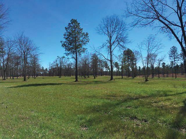 LOT43P7 Marsh Tacky Run, AIKEN, SC 29803 (MLS #112721) :: Fabulous Aiken Homes