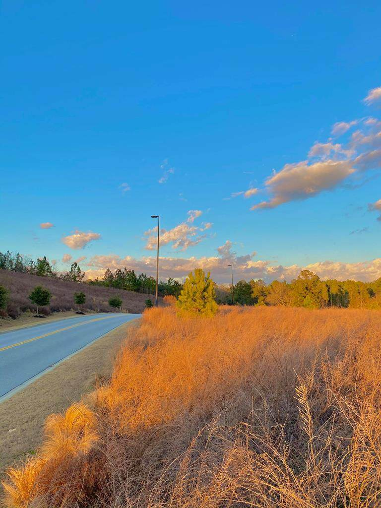 000 Simple Savings Drive - Photo 1