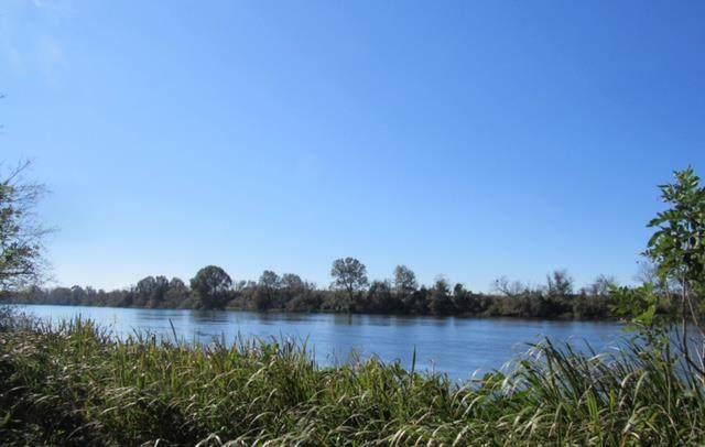 Lot 40 Riverside Plantation Road - Photo 1
