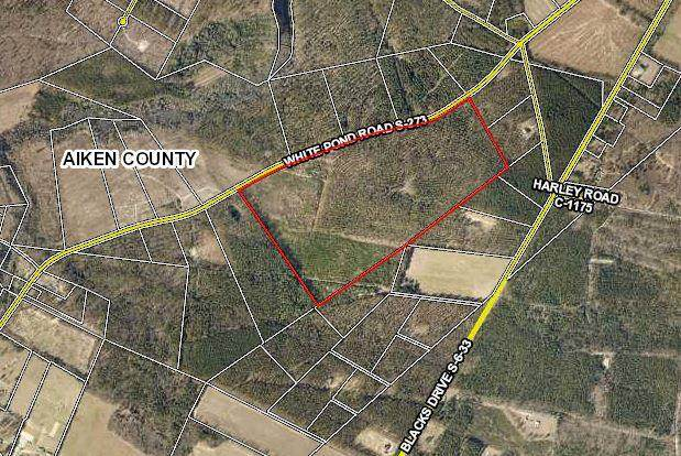 000 White Pond Road, WILLISTON, SC 29853 (MLS #115656) :: The Starnes Group LLC
