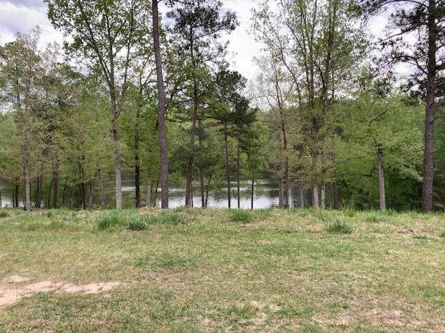 273 Lot 61 Hodges Bay Drive, AIKEN, SC 29803 (MLS #116352) :: RE/MAX River Realty