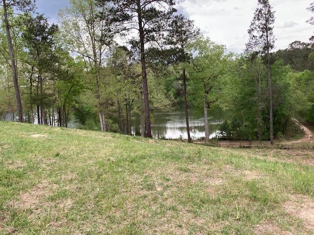 279 Lot 62 Hodges Bay Drive, AIKEN, SC 29803 (MLS #116356) :: RE/MAX River Realty