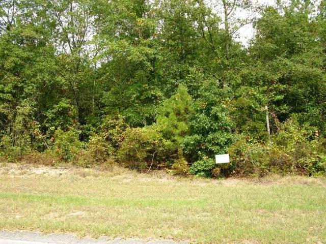 LOT 19 Eve Street, AIKEN, SC 29803 (MLS #56220) :: Shannon Rollings Real Estate