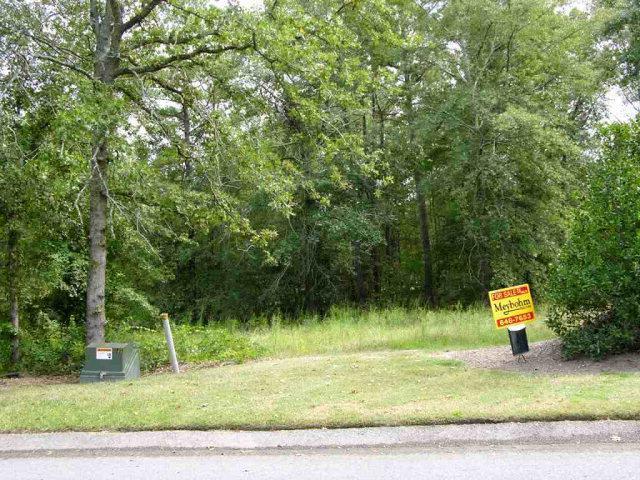 LOT 2 Eve Street, AIKEN, SC 29803 (MLS #59156) :: Shannon Rollings Real Estate