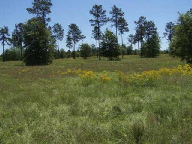 LOT 20 Cedar Ridge Drive, AIKEN, SC 29803 (MLS #96318) :: Shannon Rollings Real Estate