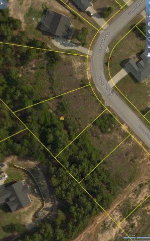 3-A Country Glen Avenue, GRANITEVILLE, SC 29829 (MLS #96663) :: Shannon Rollings Real Estate