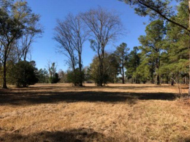 Lot 49 Grand Prix Drive, BEECH ISLAND, SC 29842 (MLS #96828) :: Venus Morris Griffin | Meybohm Real Estate