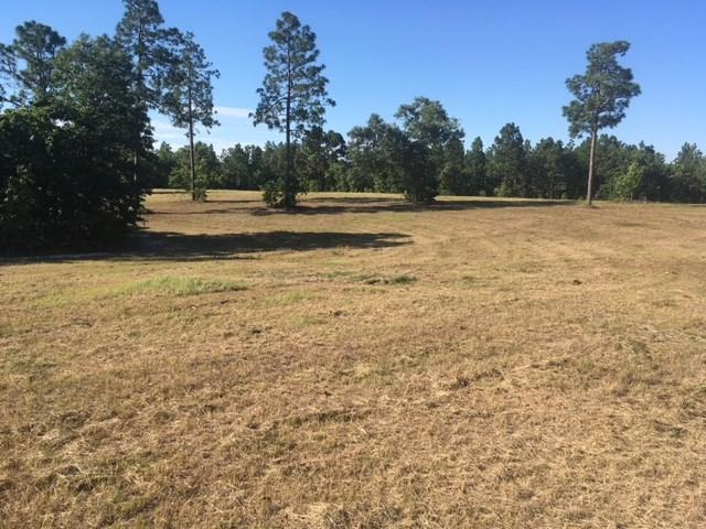 33.14 Ac Pine Acres Road, WINDSOR, SC 29856 (MLS #98938) :: Shannon Rollings Real Estate