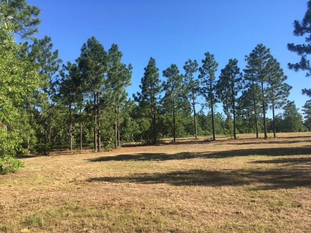 13.16 Ac Pine Acres Road, WINDSOR, SC 29856 (MLS #98939) :: Shannon Rollings Real Estate
