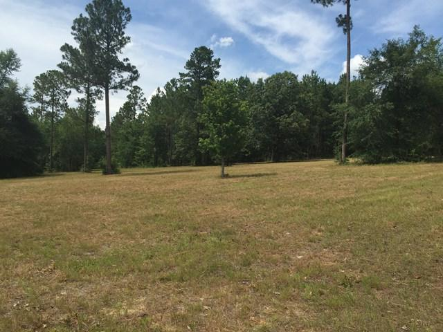 59 Equestrian Court, AIKEN, SC 29803 (MLS #98984) :: Shannon Rollings Real Estate