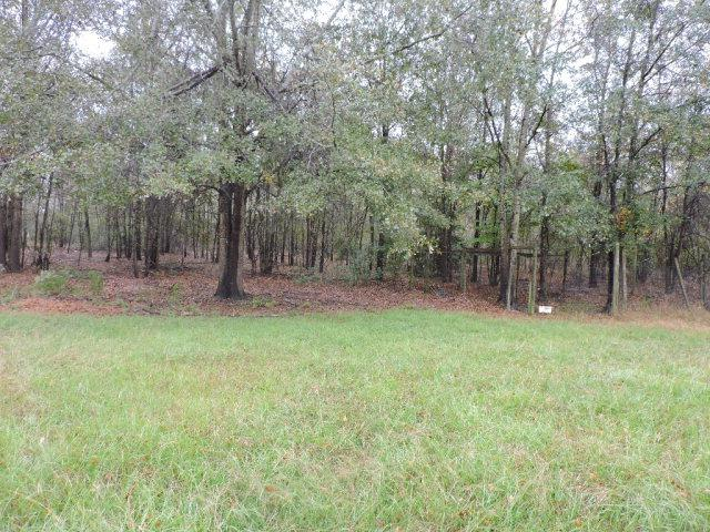 lot 14 Mallard Drive, BARNWELL, SC 29812 (MLS #99317) :: RE/MAX River Realty
