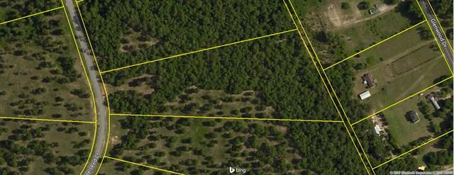 Lot 51 Sorrell Red Ct, WARRENVILLE, SC 29851 (MLS #99744) :: Shannon Rollings Real Estate