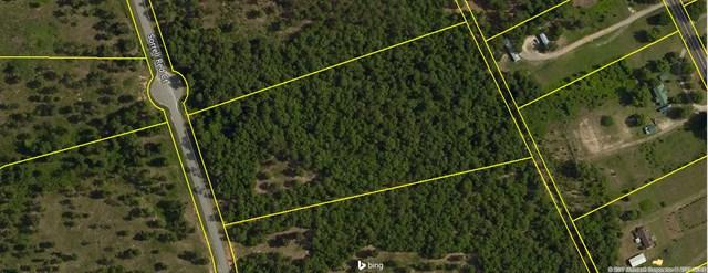 Lot 52 Sorrell Red Ct, WARRENVILLE, SC 29851 (MLS #99745) :: Venus Morris Griffin | Meybohm Real Estate