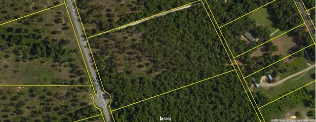 Lot 53 Sorrell Red Ct, WARRENVILLE, SC 29851 (MLS #99746) :: Venus Morris Griffin | Meybohm Real Estate