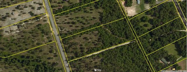 Lot 54 Sorrell Red Ct, WARRENVILLE, SC 29851 (MLS #99747) :: Venus Morris Griffin | Meybohm Real Estate