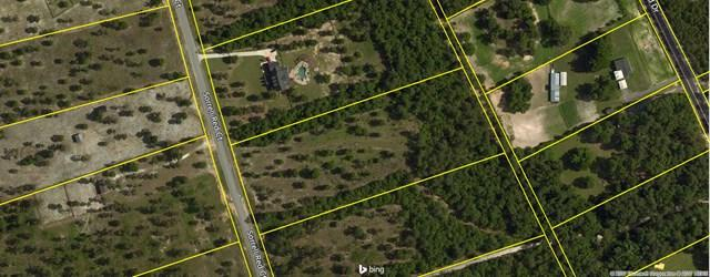 Lot 55 Sorrell Red Ct, WARRENVILLE, SC 29851 (MLS #99748) :: Venus Morris Griffin | Meybohm Real Estate