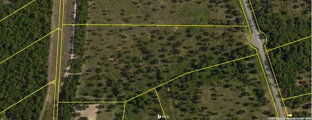 Lot 64 Sorrell Red Ct, WARRENVILLE, SC 29851 (MLS #99751) :: Shannon Rollings Real Estate