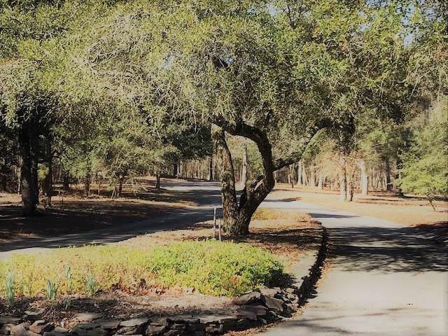 Lot 6 Wild Oaks Lane - Photo 1