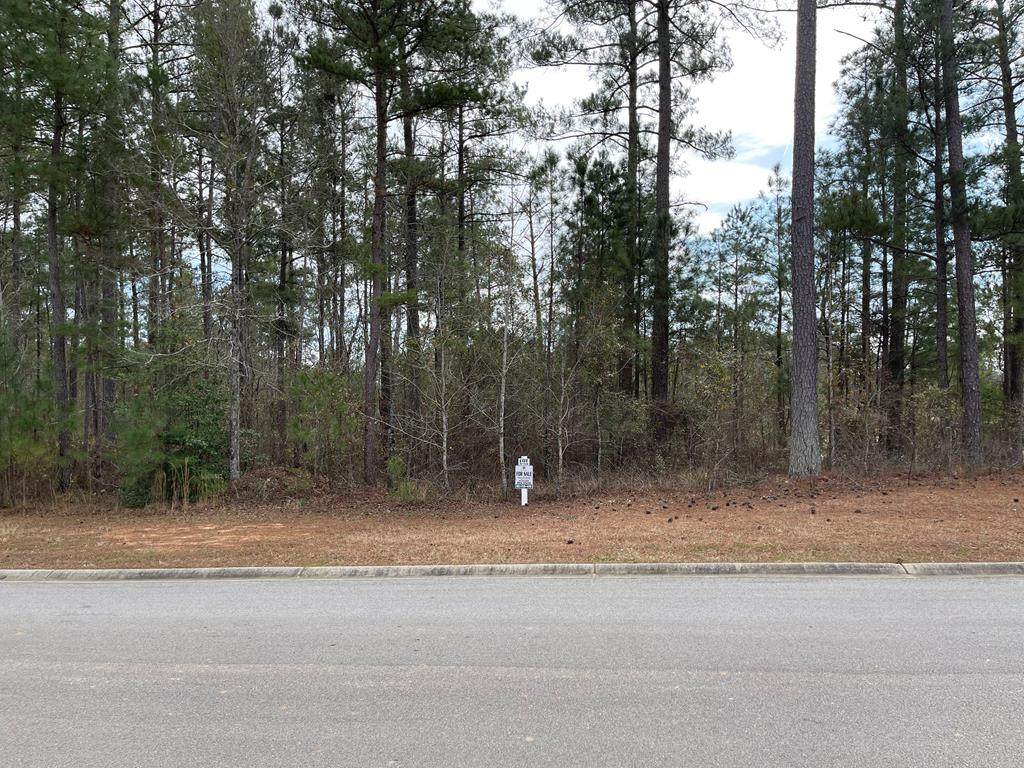 Lot N-53 Eutaw Springs Trail - Photo 1