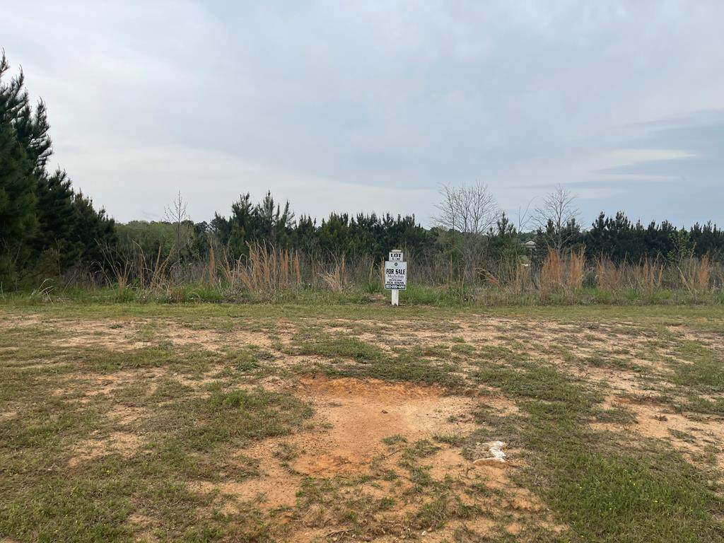 Lot L-11 Militia Loop - Photo 1