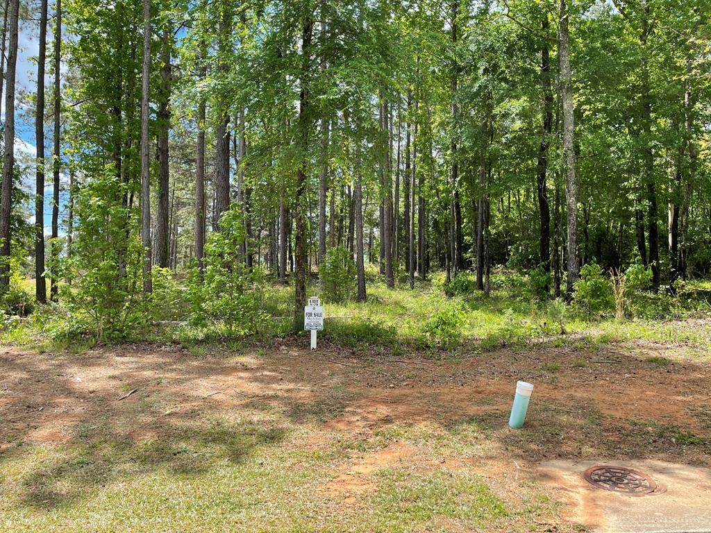 Lot N-78 Eutaw Springs Trail - Photo 1