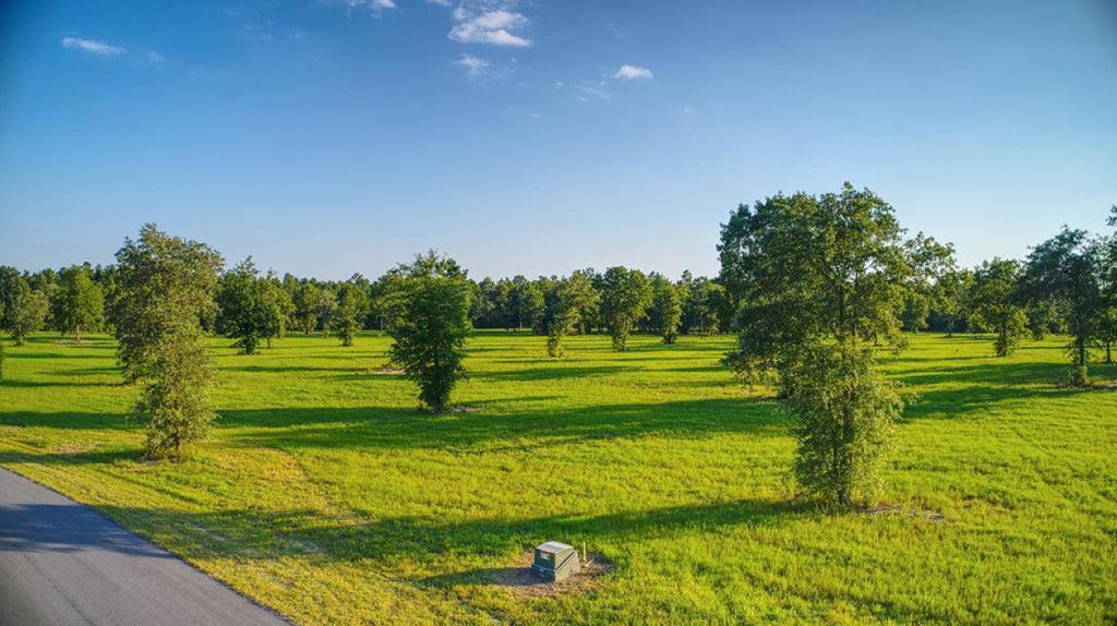 Lot 50 Bayboro Circle - Photo 1