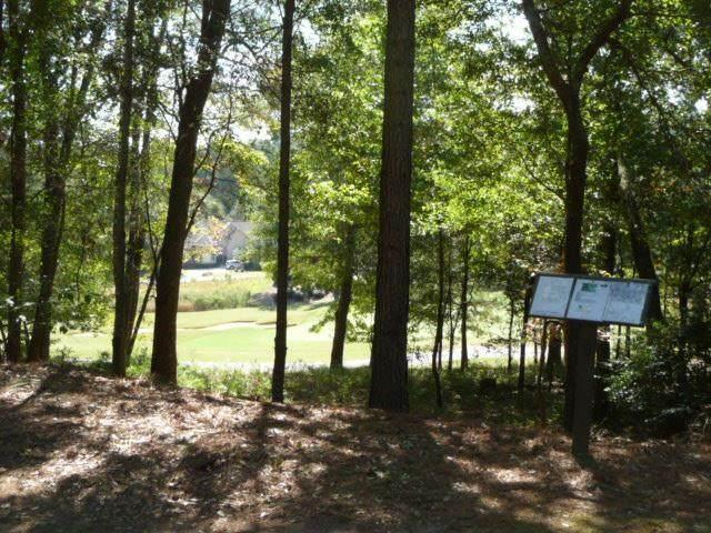 517 West Pleasant Colony Drive - Photo 1