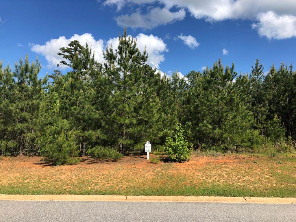Lot N-50 Eutaw Springs Trail - Photo 1