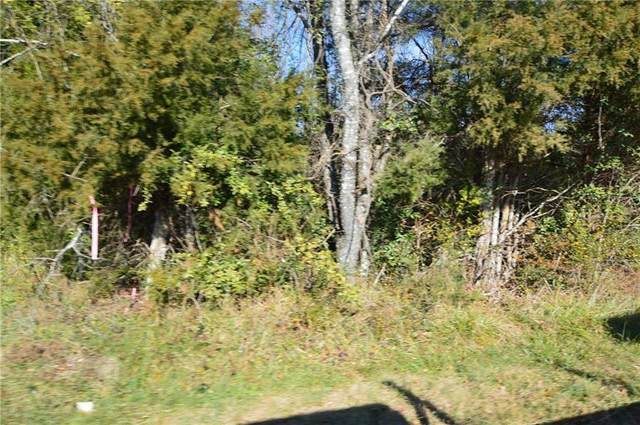 00 White Level Road, Mebane, NC 27302 (MLS #116517) :: Nanette & Co.