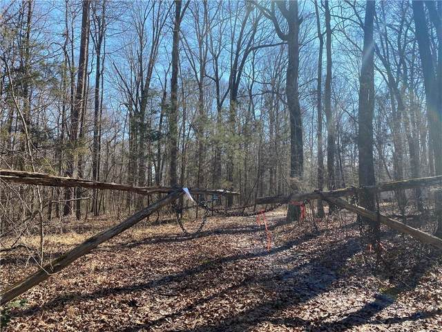 9650 Twisted Oak Trail, Snow Camp, NC 27349 (MLS #116627) :: Witherspoon Realty