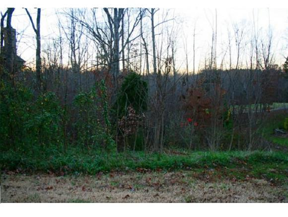 705 Croswell Ct, Whitsett, NC 27377 (MLS #102559) :: Nanette & Co.