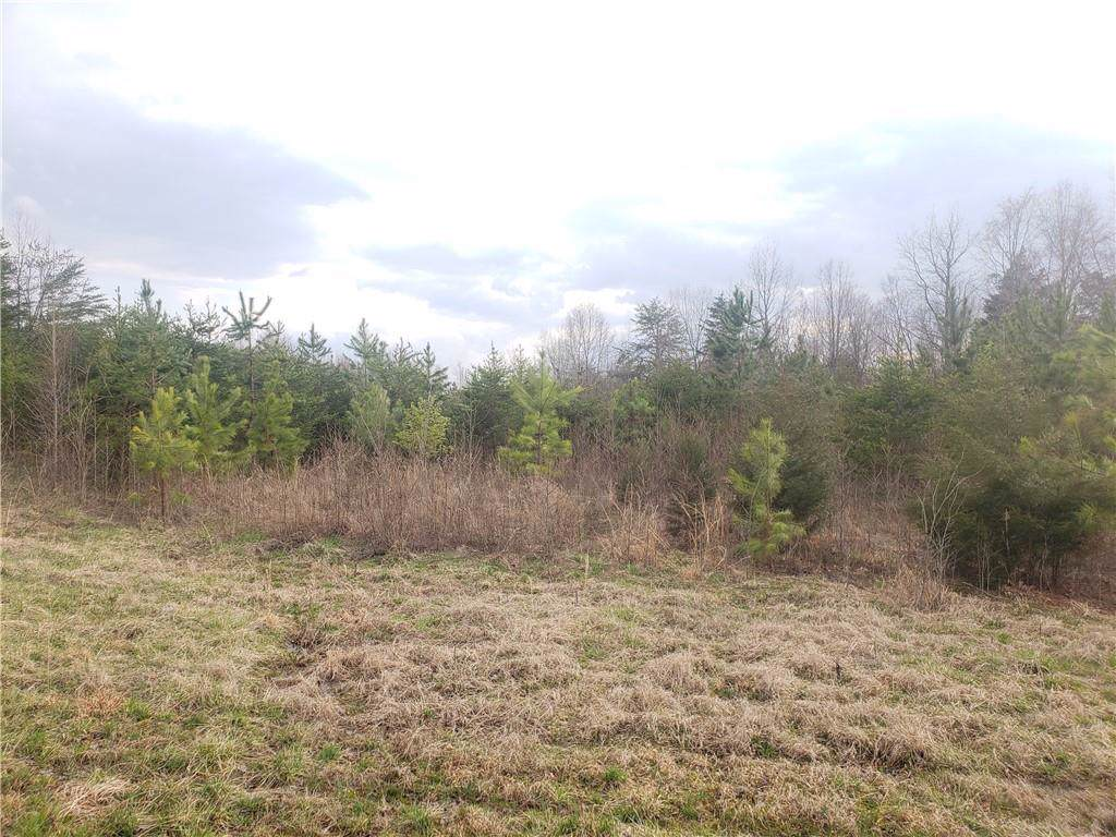 5328 Hoover Road - Photo 1