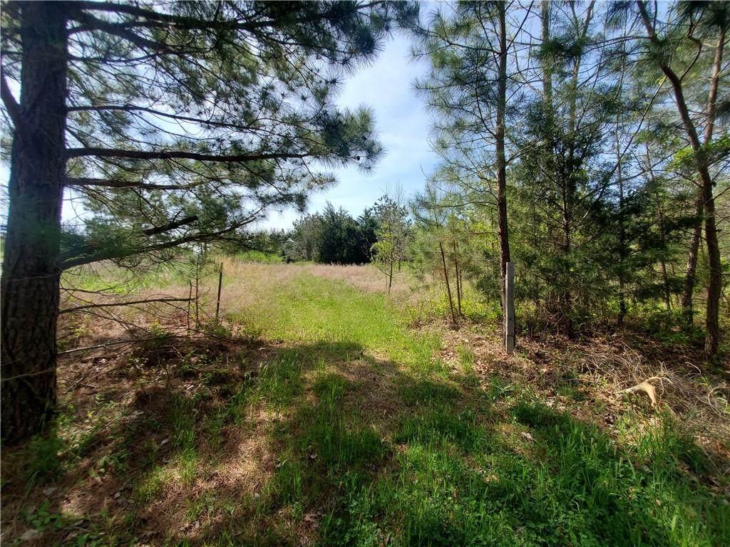 5004 Adder Ridge Lane - Photo 1