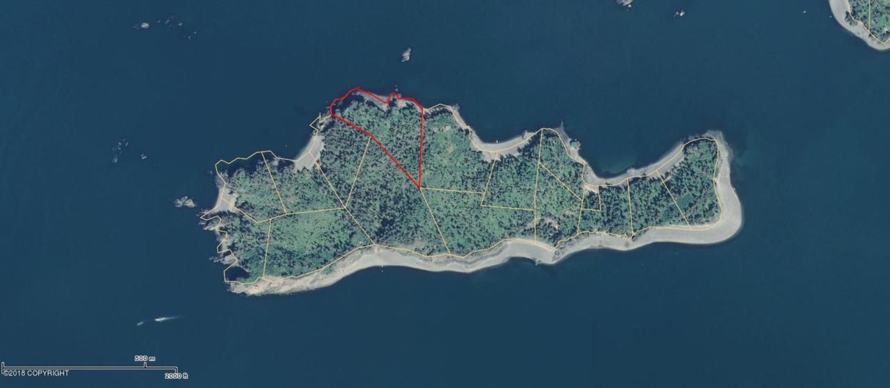 Tr 11 Hesketh Island - Photo 1