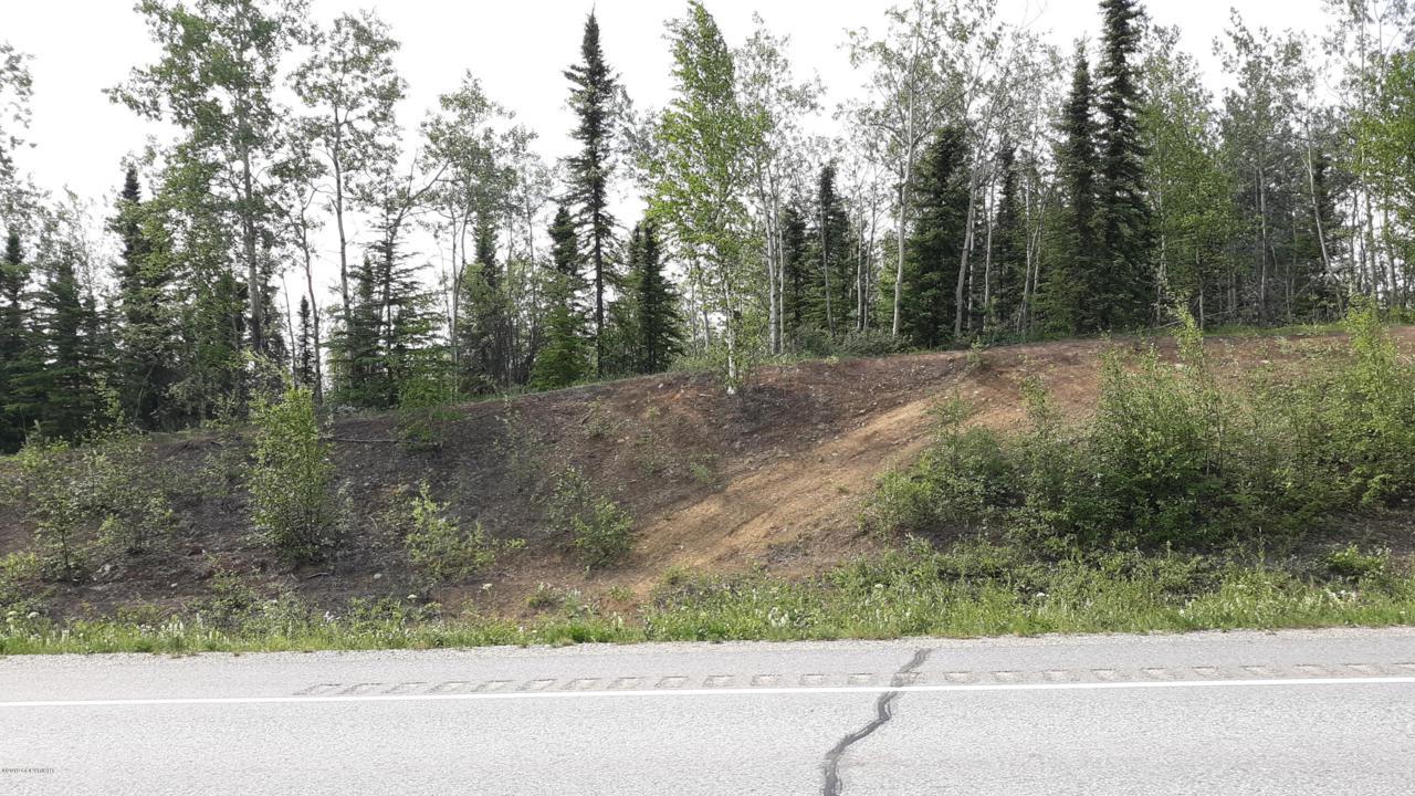 Mi 1414.5 Alaska Highway - Photo 1
