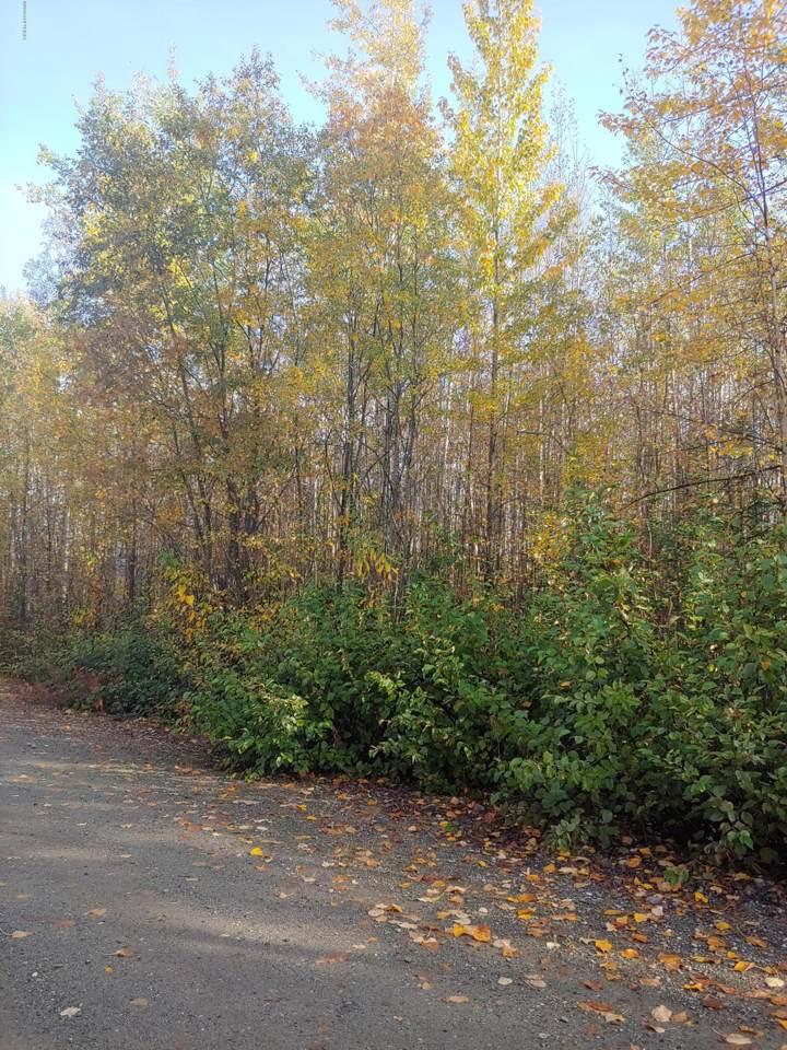 13909 Railside Drive - Photo 1