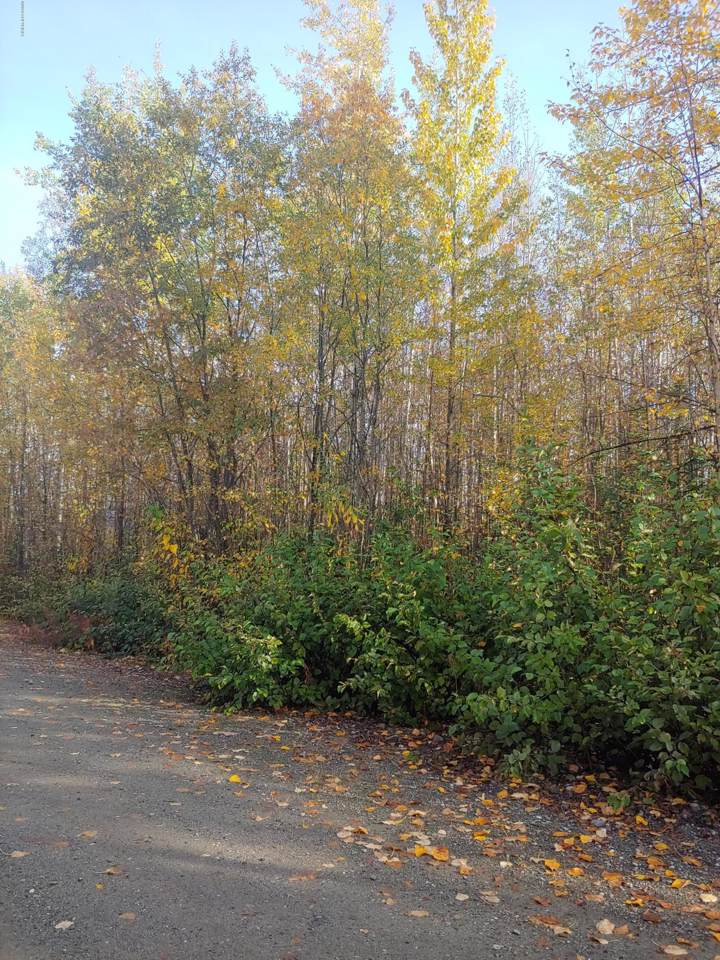 13969 Railside Drive - Photo 1