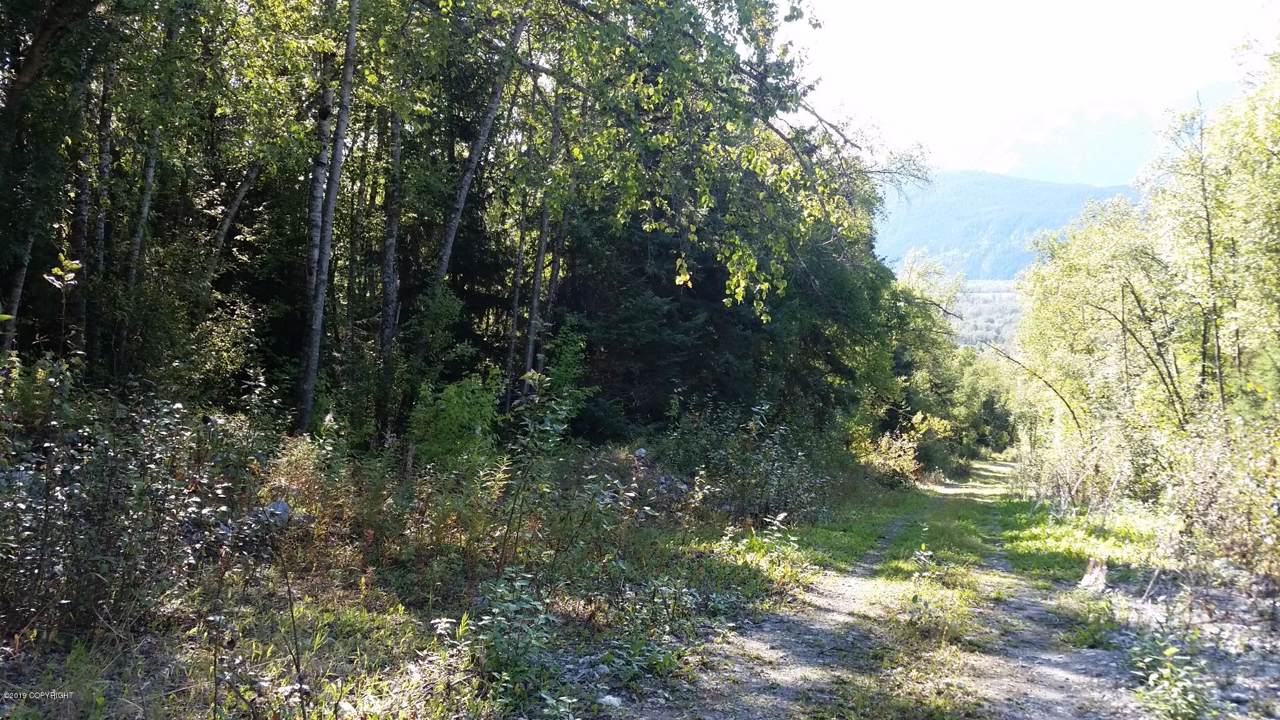 3A2 Billy Goat Road - Photo 1
