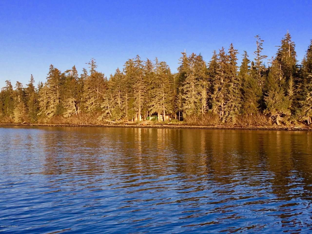 L15 BE Wadleigh Island - Photo 1