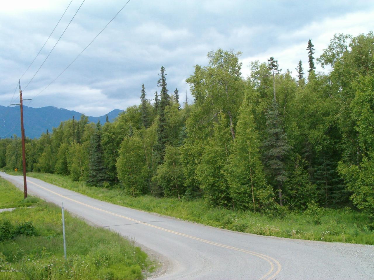 5851 Tazlina Drive - Photo 1