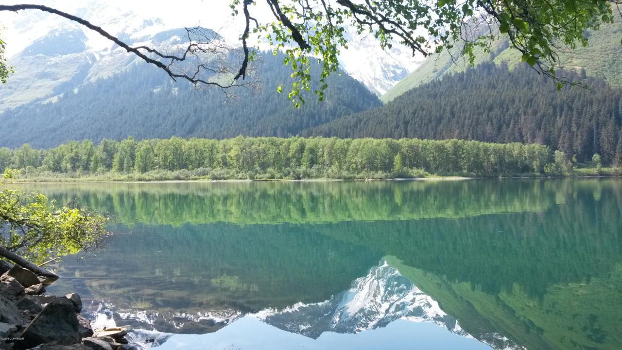 L1-2 B6 Chilkat Lake - Photo 1