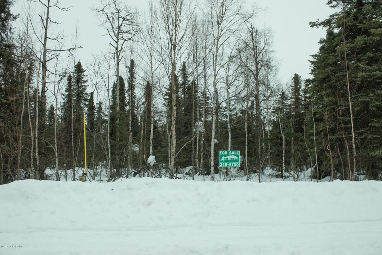 15387 Wild Bill Way - Photo 1