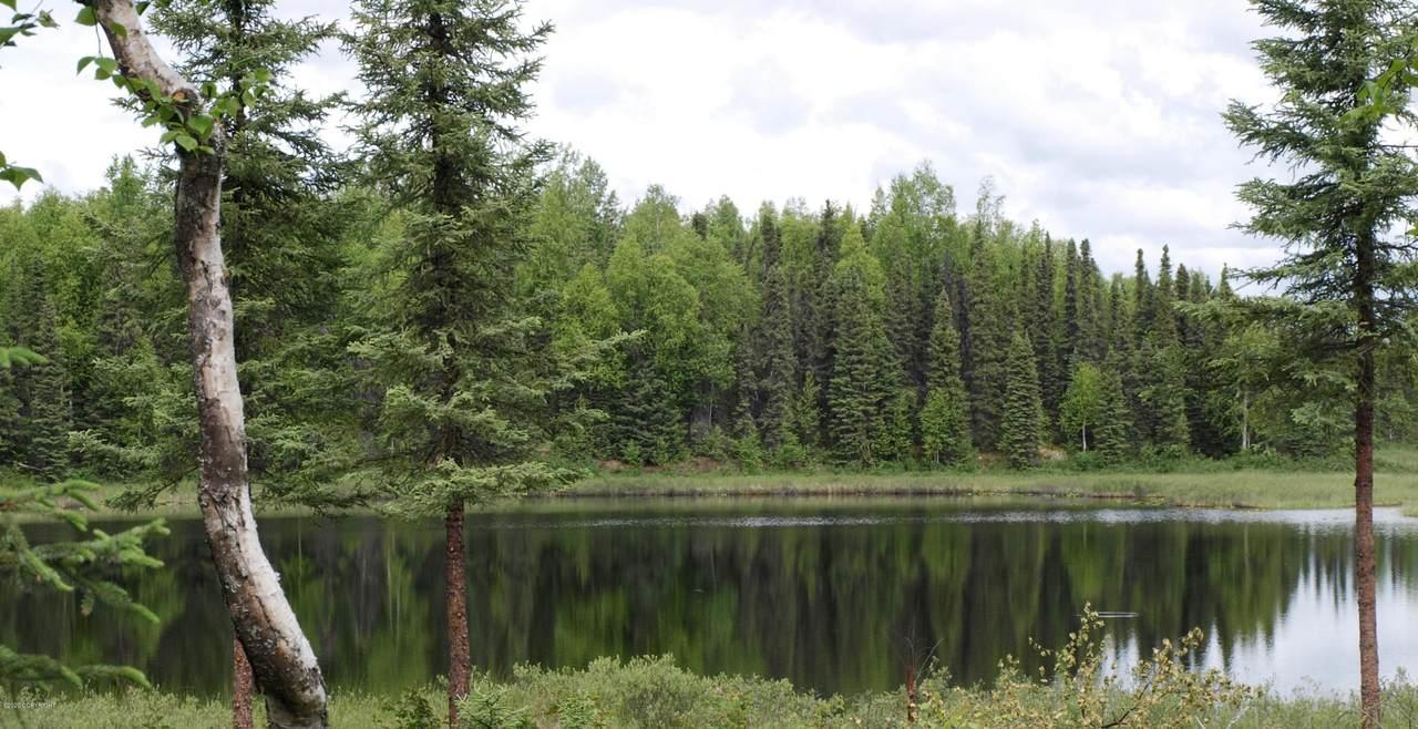 48950 Silver Salmon Drive - Photo 1