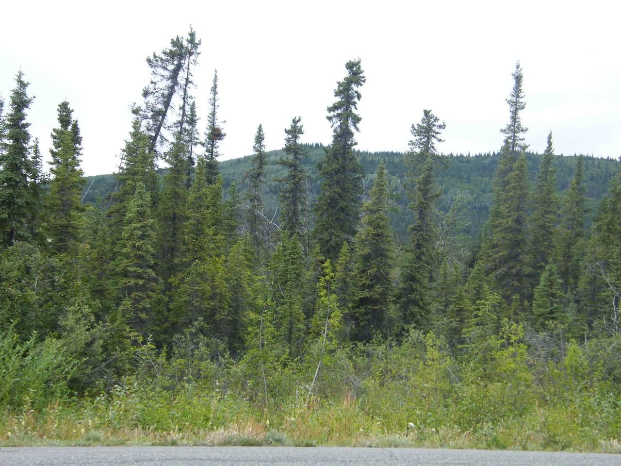 Mi 115 Richardson Highway - Photo 1