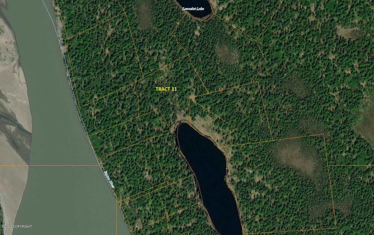 Tr 11 Unnamed Lake (No Road) - Photo 1